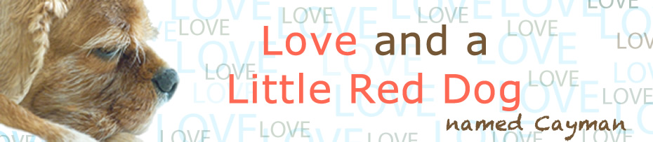 Love and a Little Red Dog