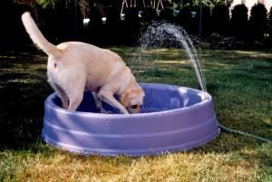 Sandi in her pool
