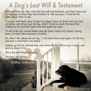 A dog's last will and testament